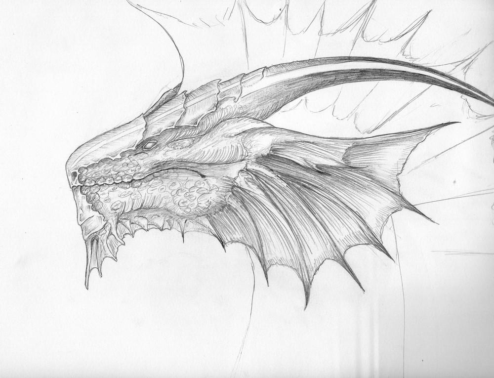 Espace membre galerie de nibilli - Dessin de tete de dragon ...