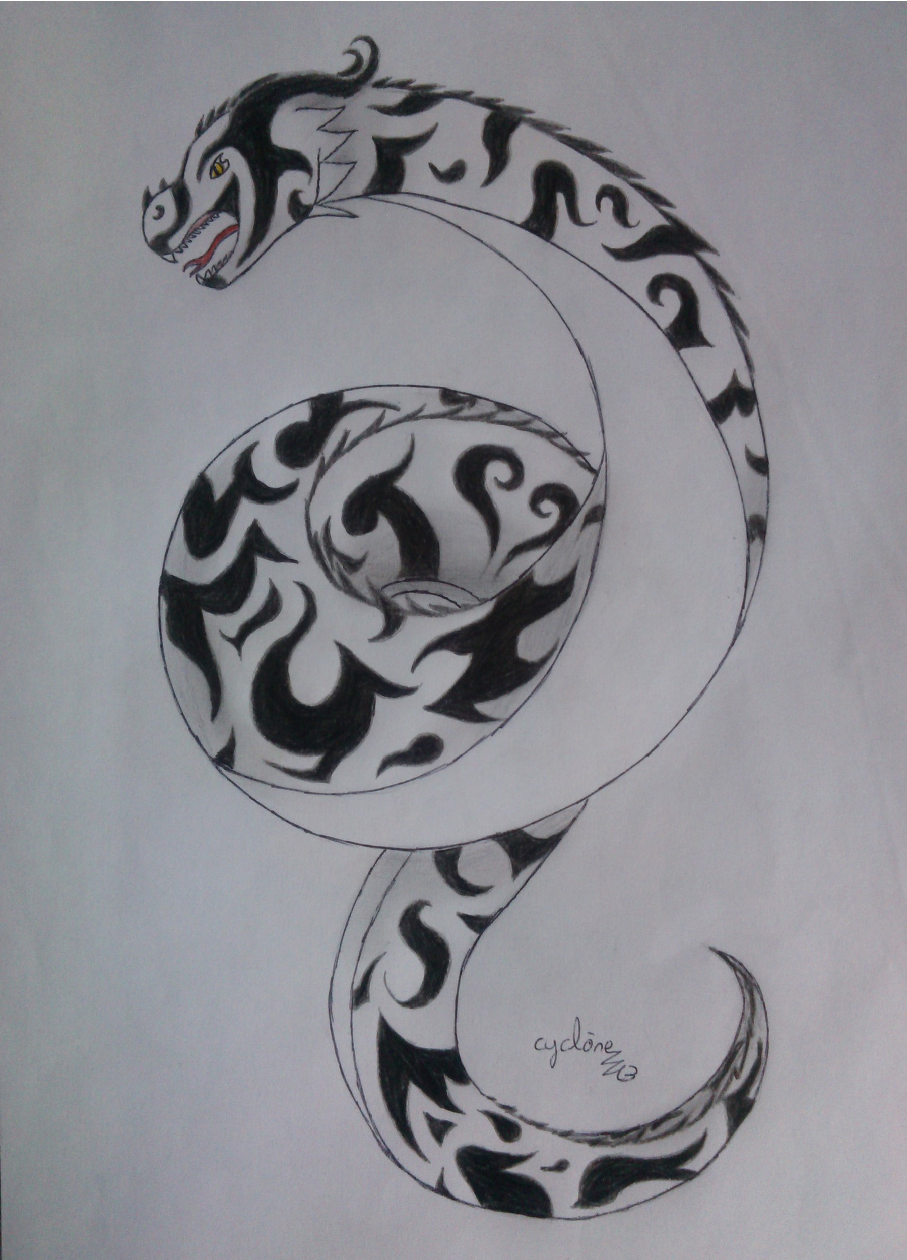 Espace Membre Creation Tribal Dragon