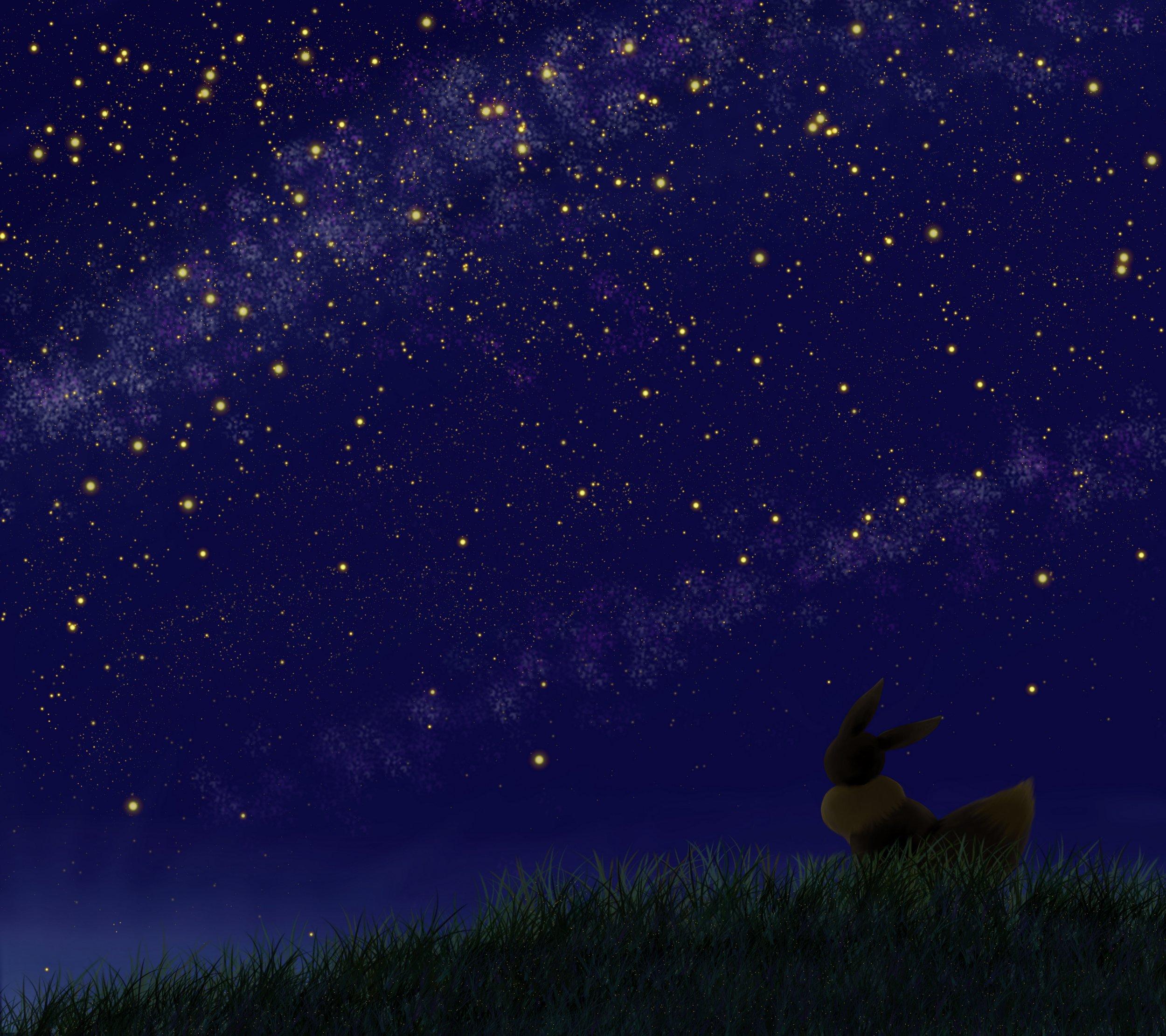 Espace membre recherche des images associ es au mot cl evoli - Fabriquer un ciel etoile ...