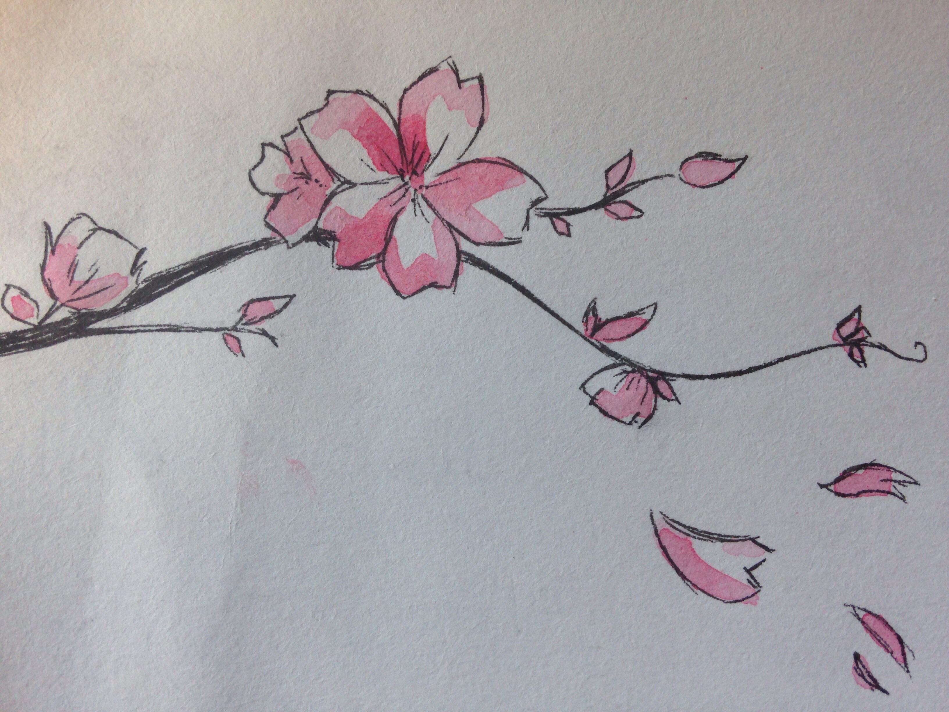 Fleur de cerisier dessin galerie tatouage - Fleur en dessin ...