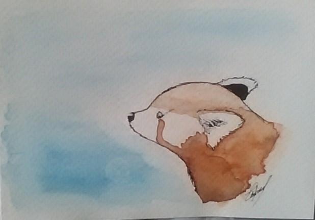 Espace Membre Création Panda Roux Suricate Et Aigle Xd