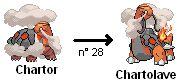 chartor pokémon