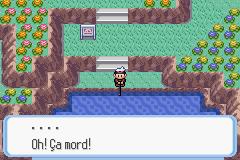 """Résultat de recherche d'images pour """"oh ça mord pokemon"""""""