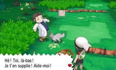 shiny poochyena sprite  Pokémon Rubis Oméga et Saphir