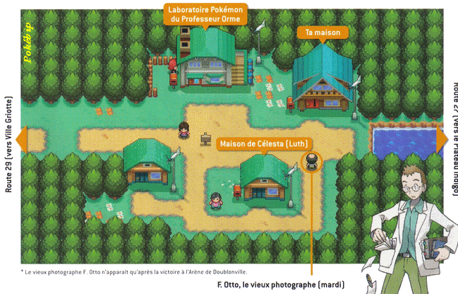 pokemon soul silver how to get map