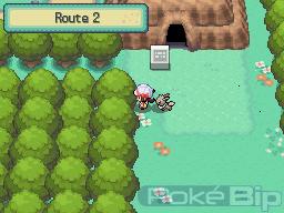 Soluce Venante de Pokebip Route2