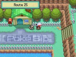 Soluce Venante de Pokebip Route25