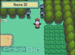 Soluce Venante de Pokebip Route32