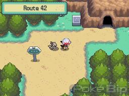 Soluce Venante de Pokebip Route42