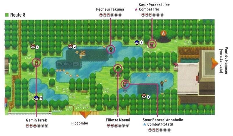pokemon black 2 guide pdf