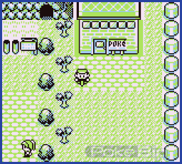 Pok mon rouge et bleu route 10 pok - Sulfura pokemon rouge ...