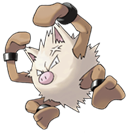 Mes Pokémon. 57